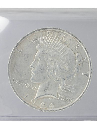 Silver Peace Dollar Cull Lot of 1 Coin