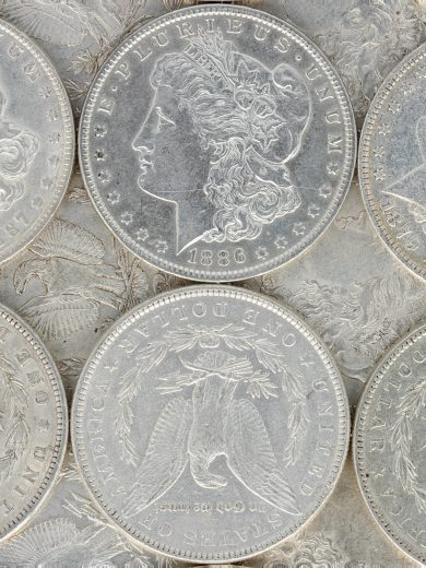 Pre 1921 Morgan Dollar XF lot 1