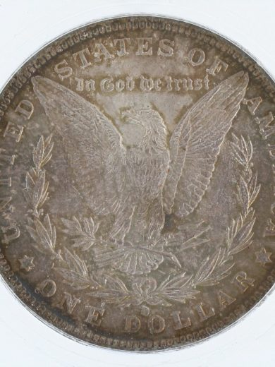1884-O Morgan MS67 Reverse