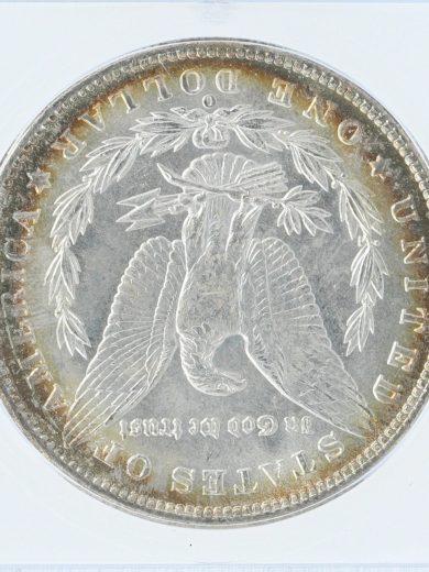 1901-o-icg-ms66-s1/50701/rev-zm